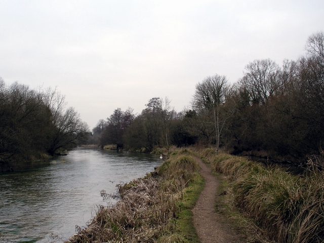 River Itchen between Ovington and Itchen Abbas