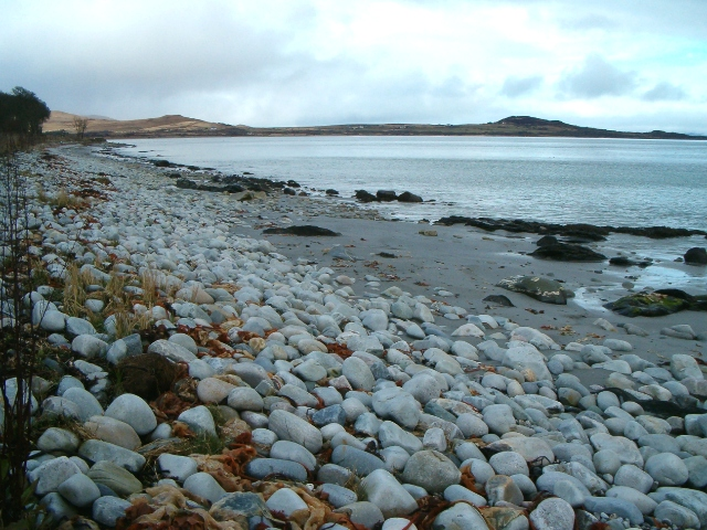 Shore near Jura Forest