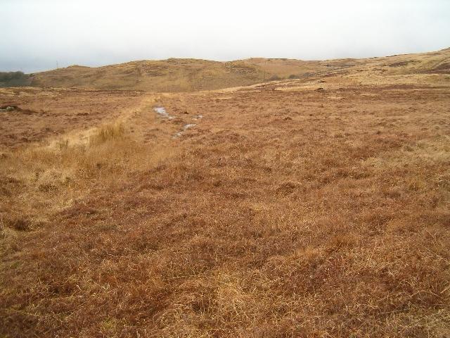Moorland at Cabrach