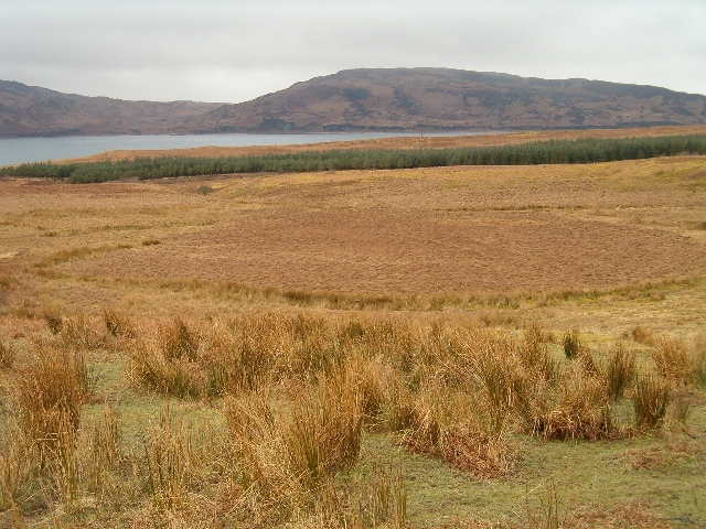 View towards the Sound of Islay