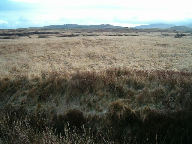 Moorland on Islay