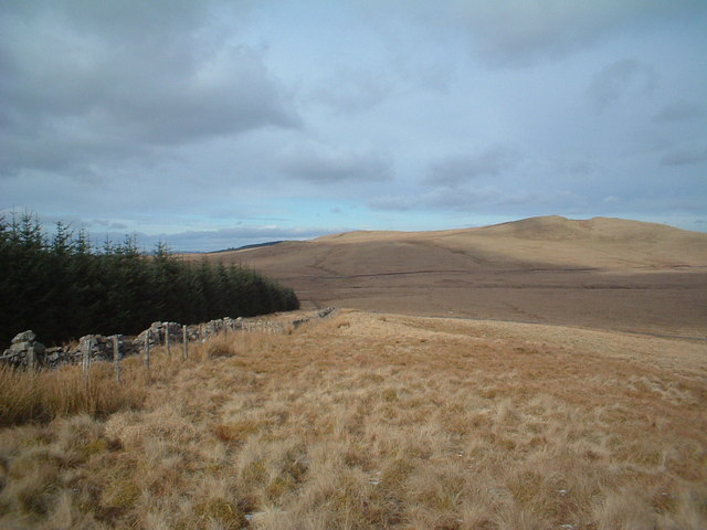 Middle Muir