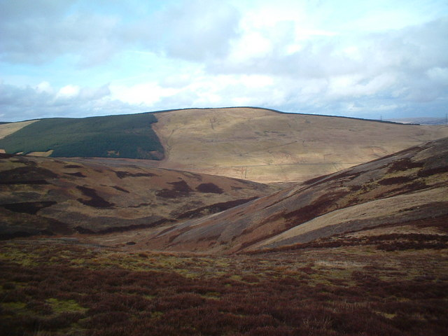 Towards Kirk Gill