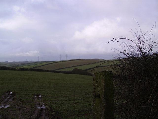 Farmland Dendron