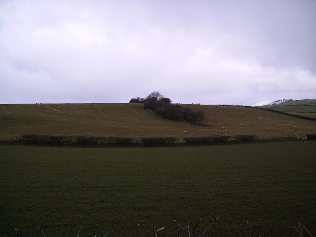 Farmland Near Newton
