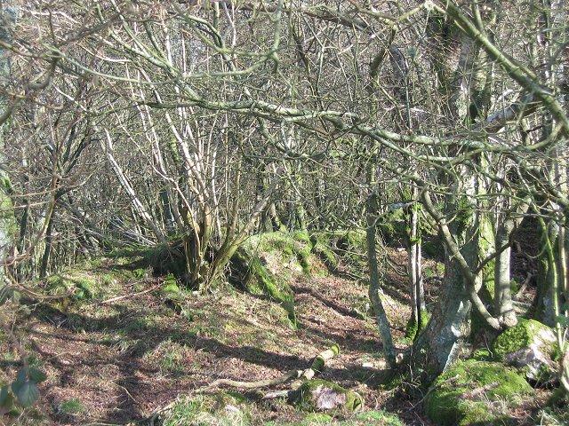 Barclosh Hill