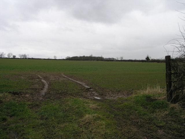 Field to Winkburn