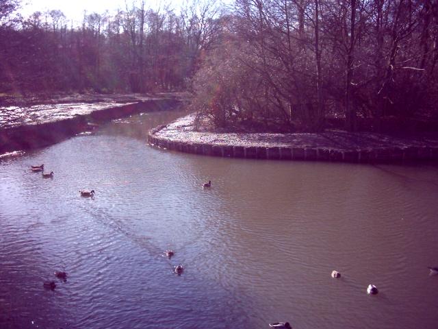 Meriden Park lake
