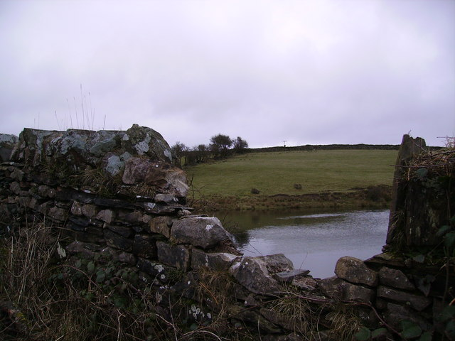 Wall and Pond