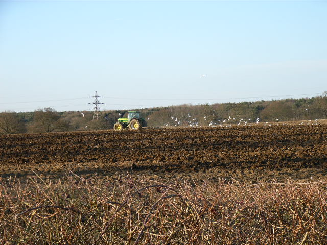 Ploughing near Preston Bissett