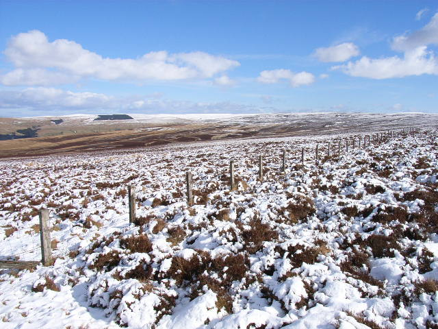 Fence on Staneshaw Rigg