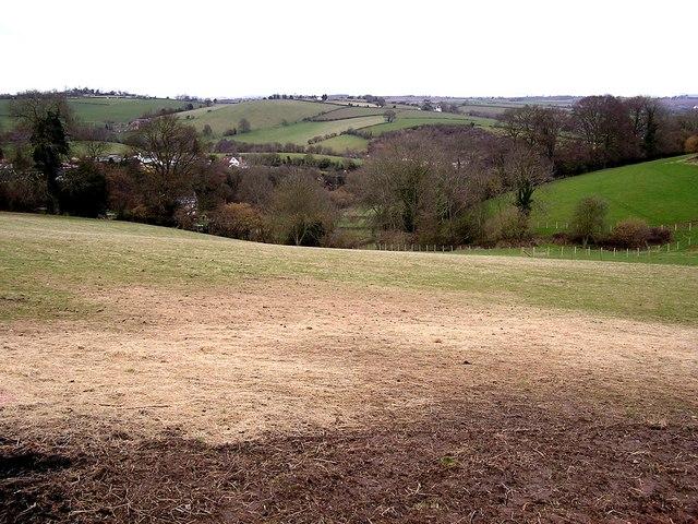 Farmland, Crockers' Ash