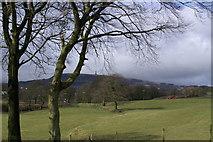 SD7913 : Towards Holcombe Hill by Gillian Rimington