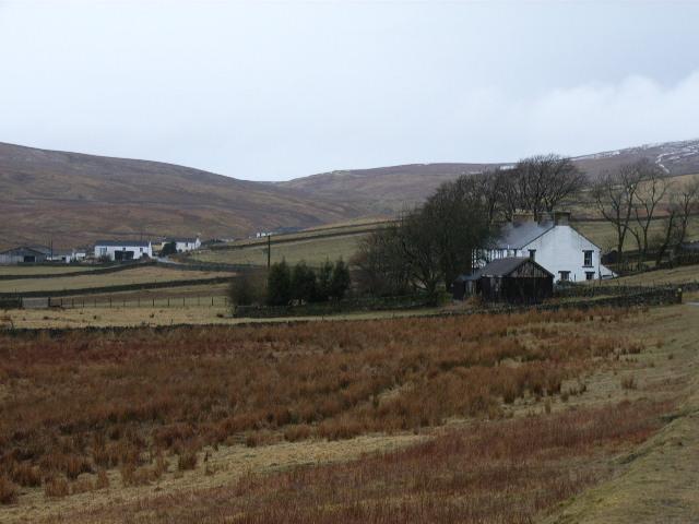 White cottages, Harwood