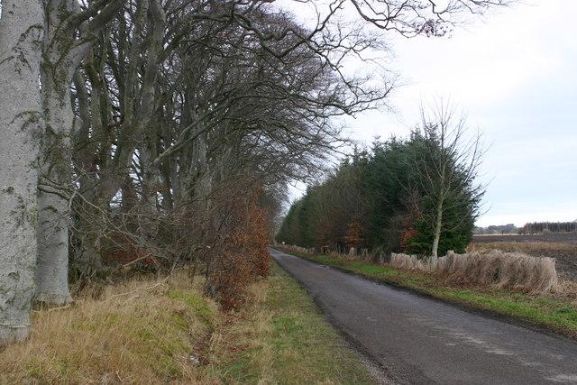 Roadscene near Westfield