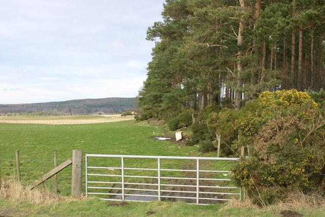 Farmland near Miltonduff