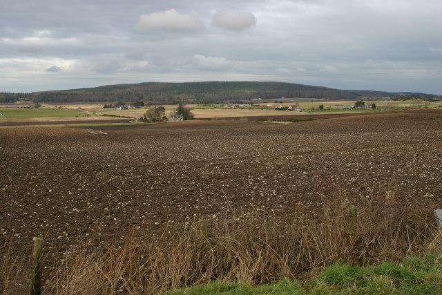 Farmland near Wester Marchhead