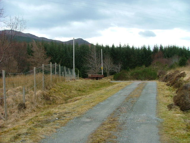 Road to Kinloch Farm