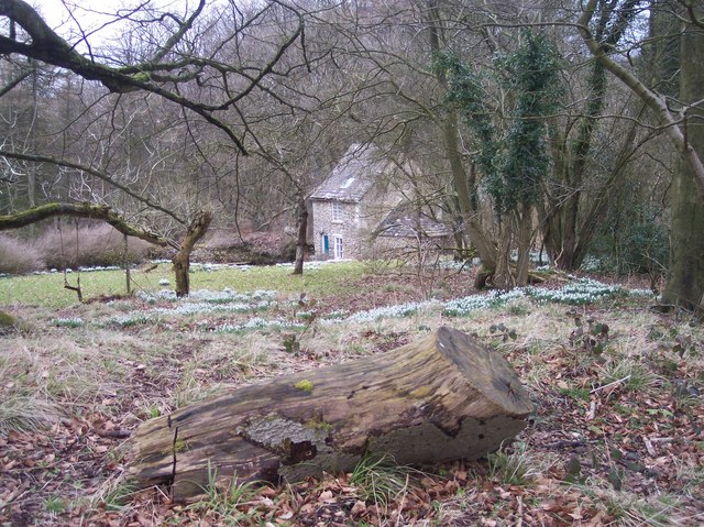 Lodge and Snowdrops