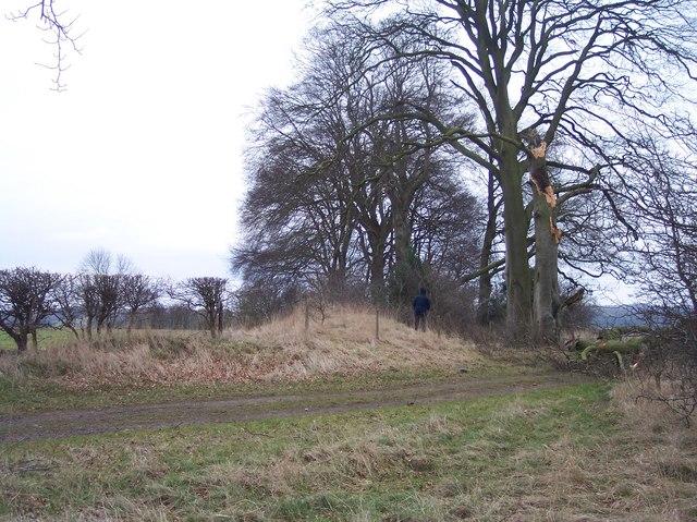 Norbury Camp, Defensive Bank