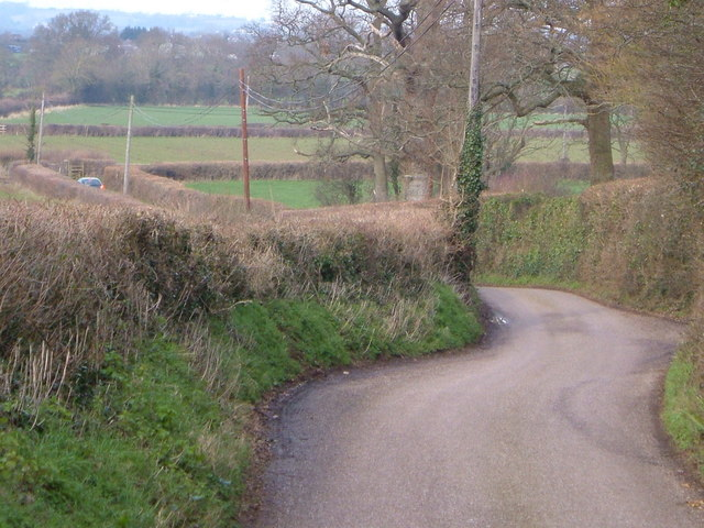 Lane near Stoke St. Mary