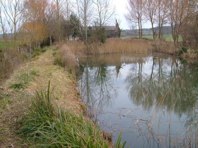 Pond near Netherclay