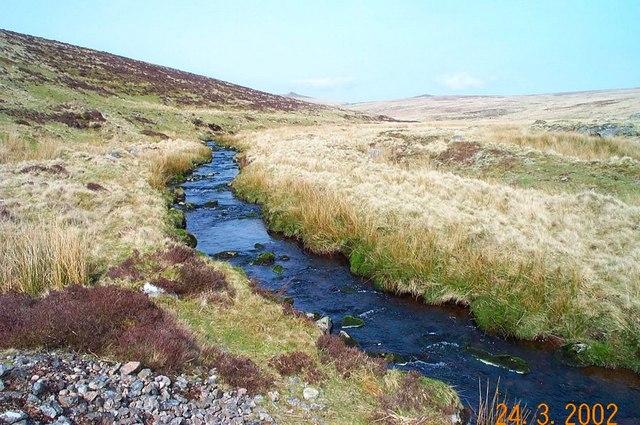 The Rattlebrook - Dartmoor