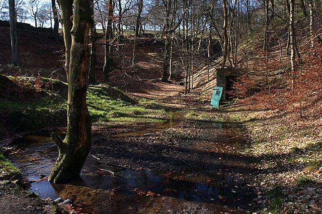 Hollingworth Nature Reserve