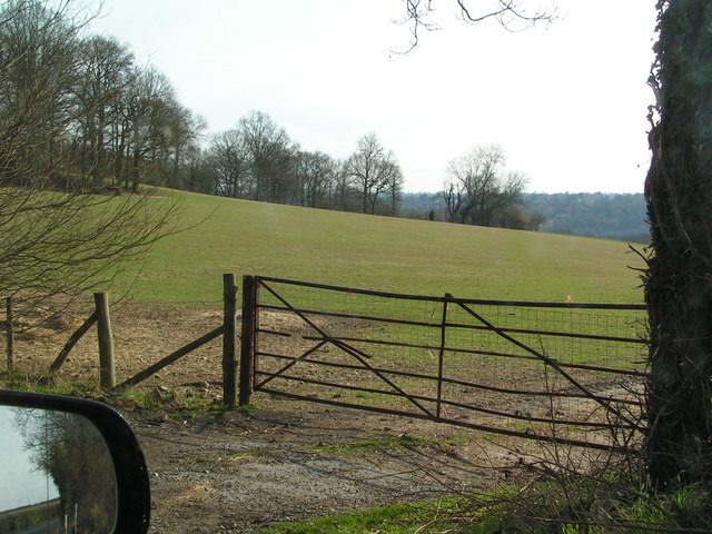 Gate with field beyond