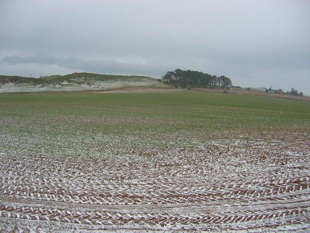 Farmland, Traprain.