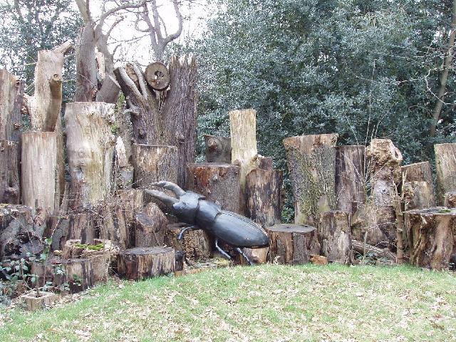 Stag beetle loggery, Kew Gardens