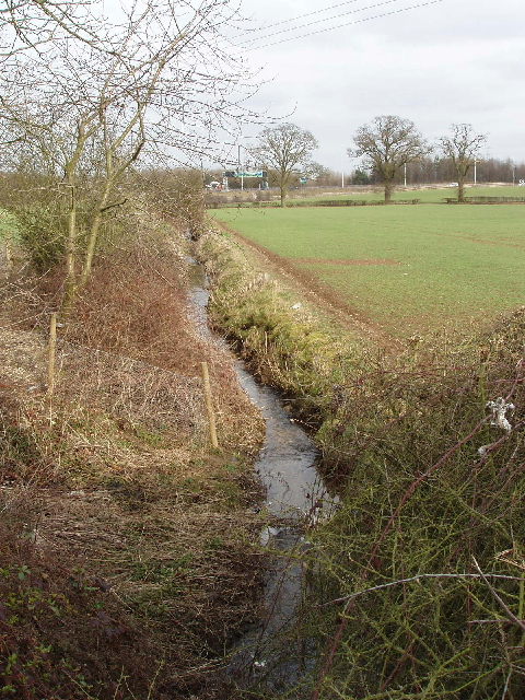 Stream by Blanche Lane, Ridge