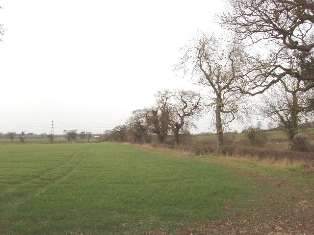 Fields at Trotter's Bottom, Dyrham Park