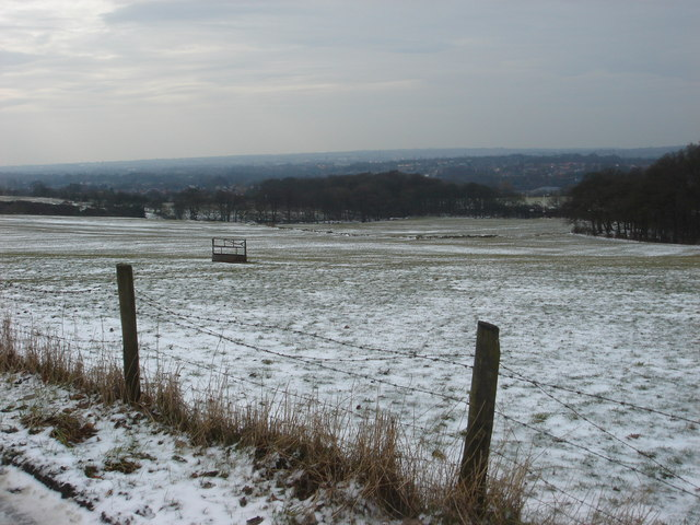 Pasture off Bradshaw Road