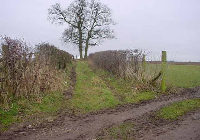 Bridleway to A66