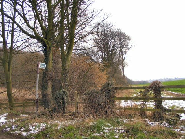 Storr's Dike Path