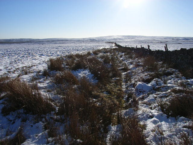 Moorland at Blacklaw Cross