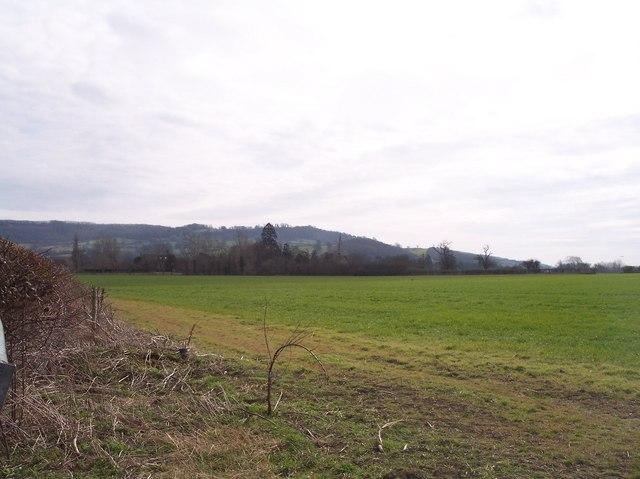 Moat Farm, Haresfield