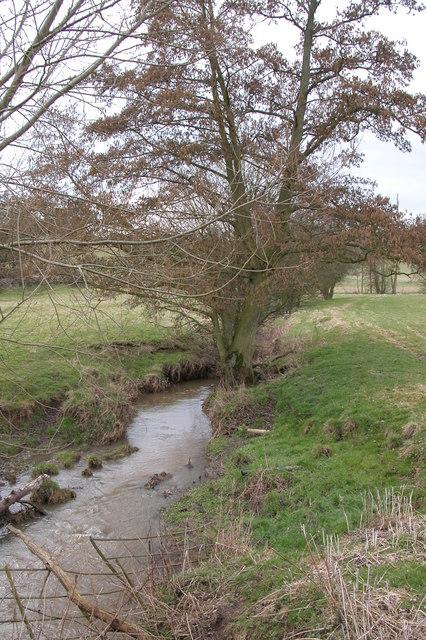 Elmbridge Brook, Elmbridge