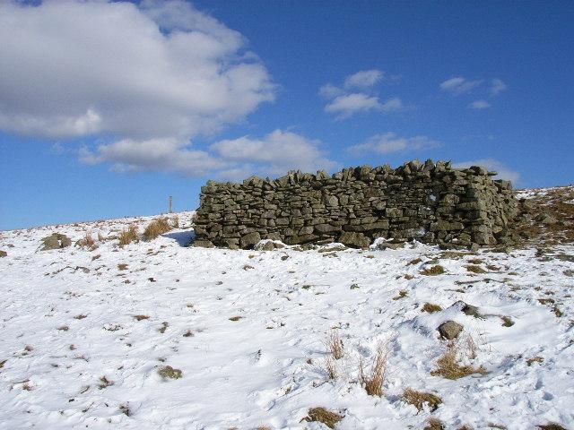 Sheepfold above Wellhopehead