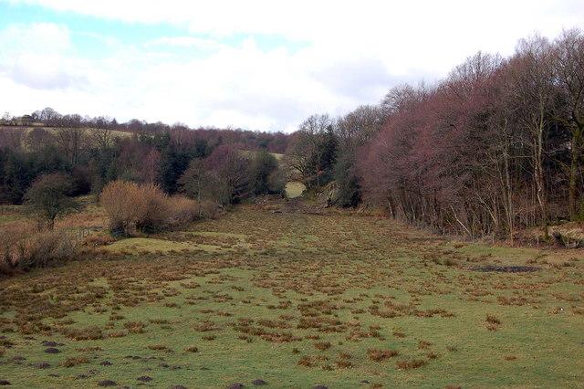 Field next to Round Close Wood