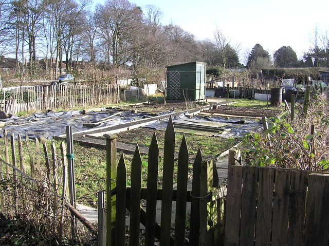 Hummersknott Allotments . off  Cemetery Lane