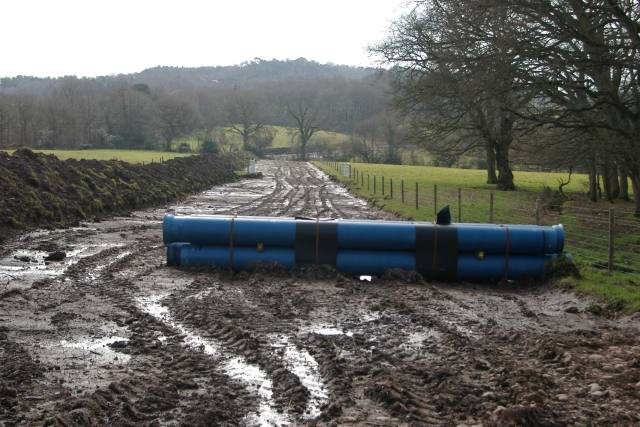 Water main works, Four Firs, Woodbury Common