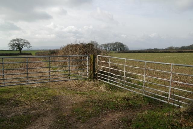 Two gates, TingTong, Woodbury Common