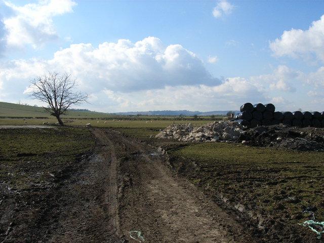 Farmland at Gipsy Bottom