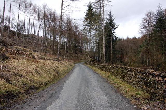 The road to Esthwaite Hall Bridge