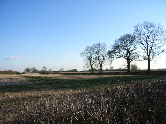 Farmland near Chetwode