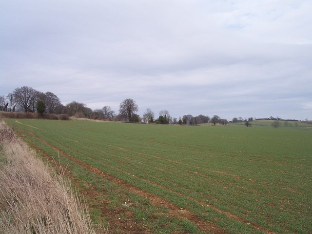 Fields of Upper Holcombe Farm