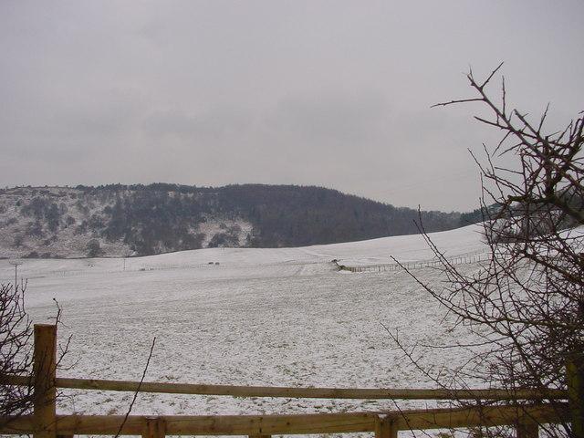 Wintry Farmland