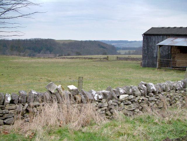 Near Great Longstone.